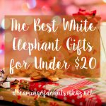 The Best White Elephant Gifts For Under $20
